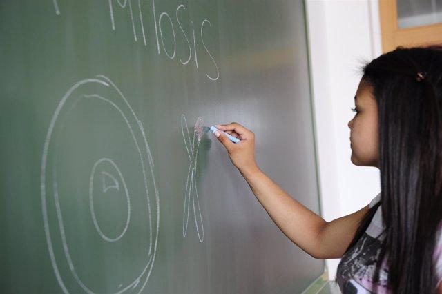 Educación, enseñanza, clases, alumnos, instituto, clase, pizarra