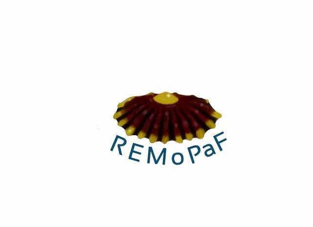 Logo Remopaf
