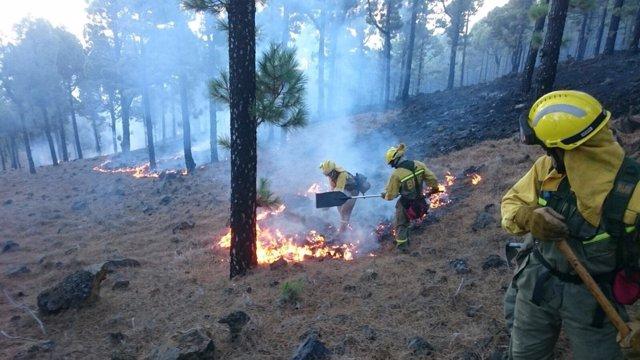 Labores de extinción en el incendio de La Palma