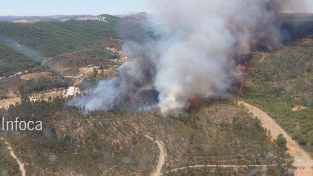 Foto del nuevo incendio declarado en Nerva