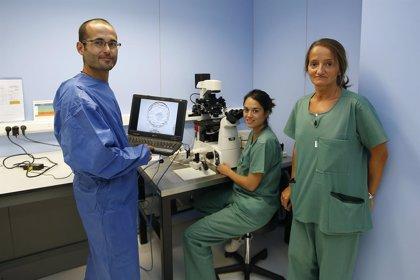 Proponen un nuevo método de asistencia a la selección de embriones