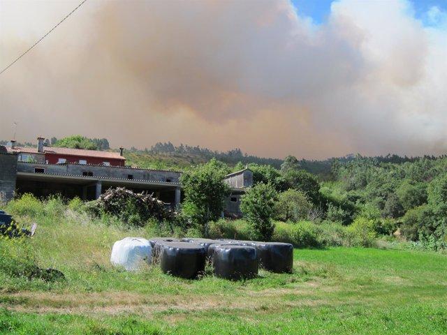 Incendio en Santa Cristina de Fecha (Santiago)