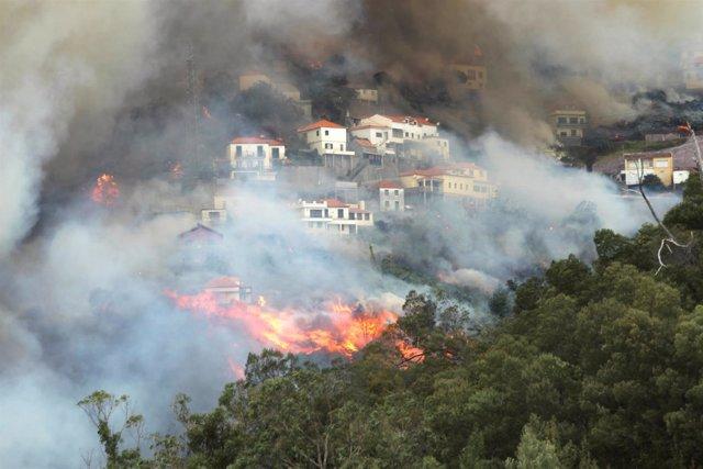 Incendio en Madeira