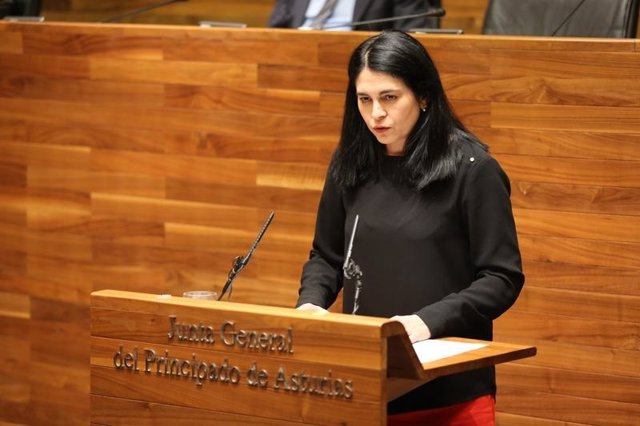 Carmen Fernández, diputada de Foro Asturias