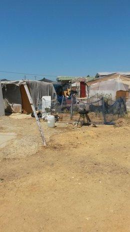 Poblado chabolista en la zona de Las Metas