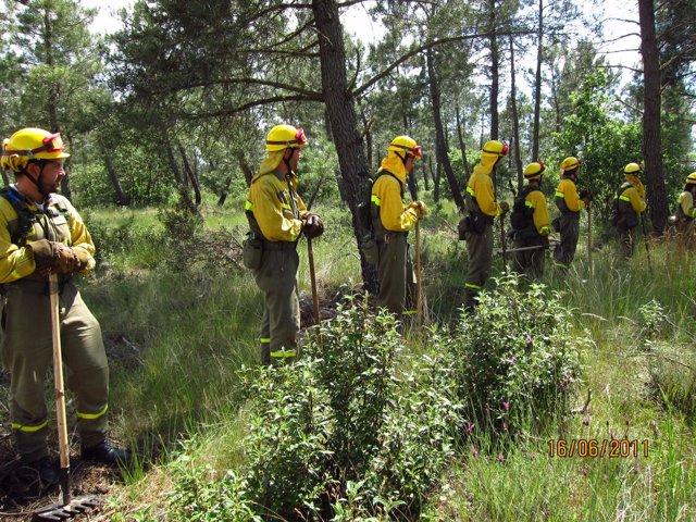 Brigada Contra Incendios Del MARM Se Prepara Para Luchar Contra El Fuego