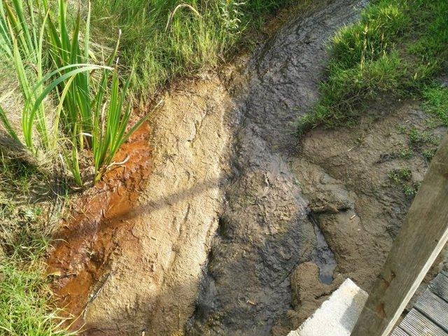 Vertido, residuos en Canallave (Piélagos)