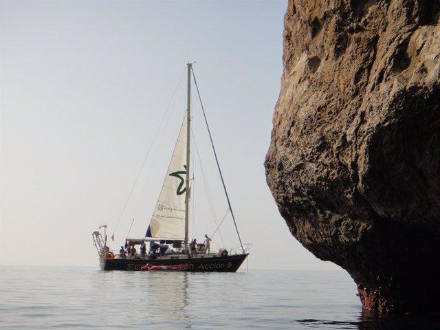 El velero Diosa Maat