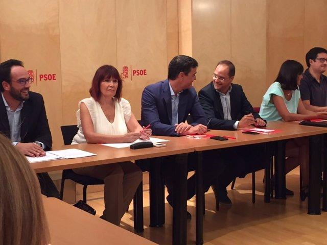 Antonio Hernando, Micaela Navarro, Pedro Sánchez y César Luena