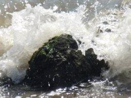 Olas y corrientes en las playas de la costa catalana