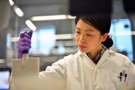 Hallan un ARN no codificante que podría frenar los tumores de pulmón y mama
