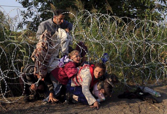 Refugiados sirios cruzan la valla en la frontera con Hungría