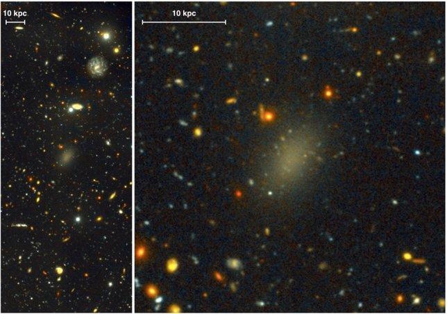 Galaxia Libélula 44