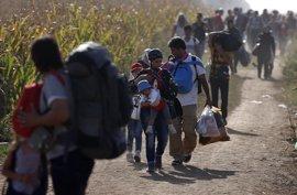Serbia detiene a tres hombres acusados de intentar introducir ilegalmente a 64 refugiados afganos en Bulgaria