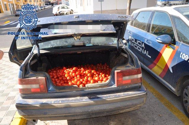 Imagen de tomates incautados.