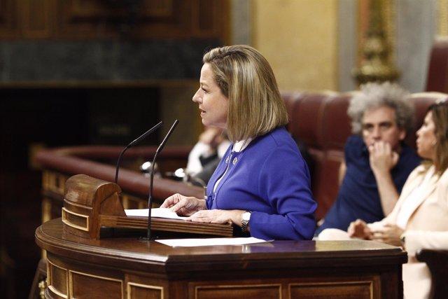 Ana Oramas (CC) en el discurso de investidura de Rajoy