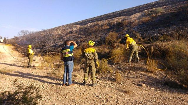 Imagen de los efectivos trabajando en el incendio declarado en Calasparra