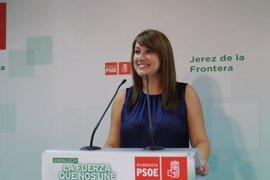 """PSOE-A: Andalucía, """"punta de lanza de políticas sociales"""" con la ley para discapacitados"""