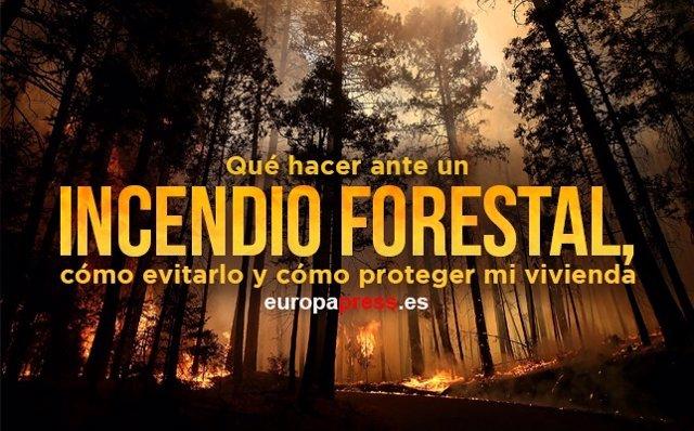 Qué hacer ante un incendio forestal, cómo evitarlo y cómo proteger mi vivienda