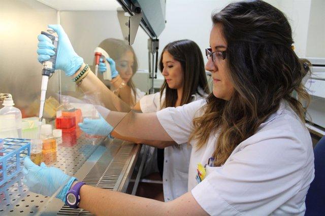 Estudio de un nuevo compuesto para frenar la enfermedad renal