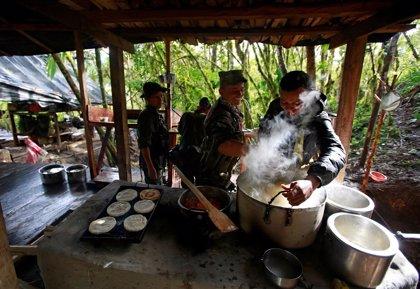 Las FARC cambian las armas por herramientas para construir el recinto de su última Conferencia Guerrillera
