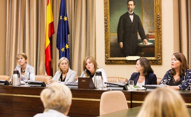 Comisión de Igualdad del Congreso