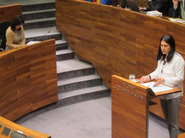 La diputada de Foro Carmen Fernández, y la consejera, durante el pleno.
