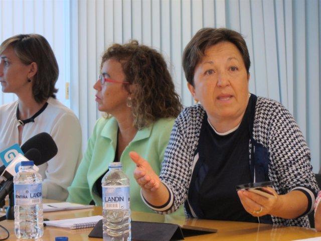 La coordinadora de la plataforma É-Saúde, Pilar Farjas