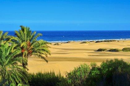 """Gran Canaria acude al Festival de Cine de San Sebastián como un """"paraíso"""" de localizaciones"""