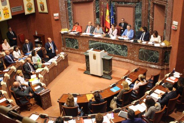 Comparecencia de Sánchez en la Asamblea Regional