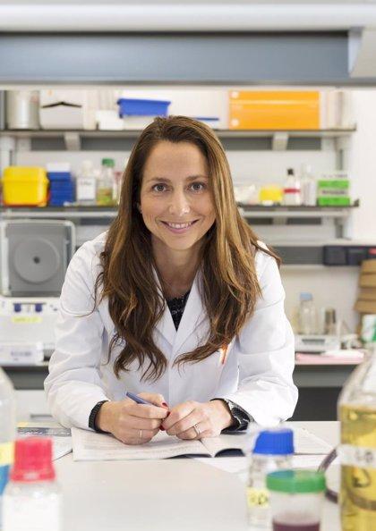 """Crean un biobanco """"viviente"""" de modelos de cáncer de mama para probar fármacos"""