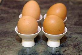 El consumo moderado de huevos no aumenta el riesgo cardiovascular