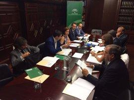 Junta y Gobierno aprueban el plan de actuaciones para demoler el Algarrobico