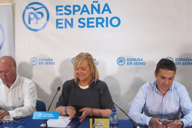 La Presidenta Del Partido Popular De Asturias, Mercedes Fernández.