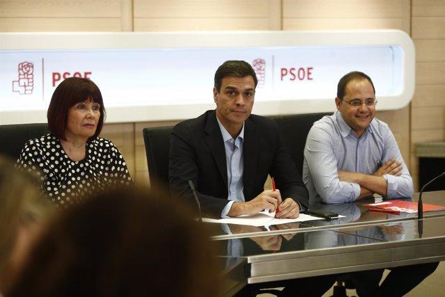 Pedro Sánchez preside la Comisión Permanente de la Ejecutiva Federal del PSOE