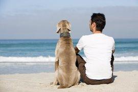 Compartimos con los perros genes relacionados con la capacidad social