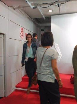 Votación en urna dle Comité federal del PSOE