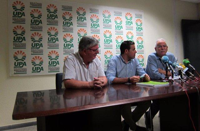 Miguel Cobos, Cristóbal Cano e Ignacio Senovilla en la rueda de prensa.