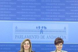 La presidenta y la portavoz adjunta de Podemos en el Parlamento impulsan lista alternativa