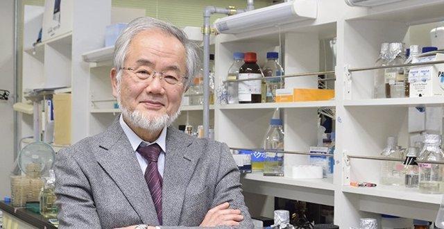 Yoshinori Ohsumi, Nobel de Medicina 2016
