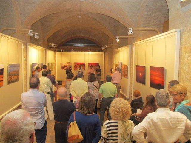 Inauguración de la muestra fotográfica de Marco Rodríguez-Piñero