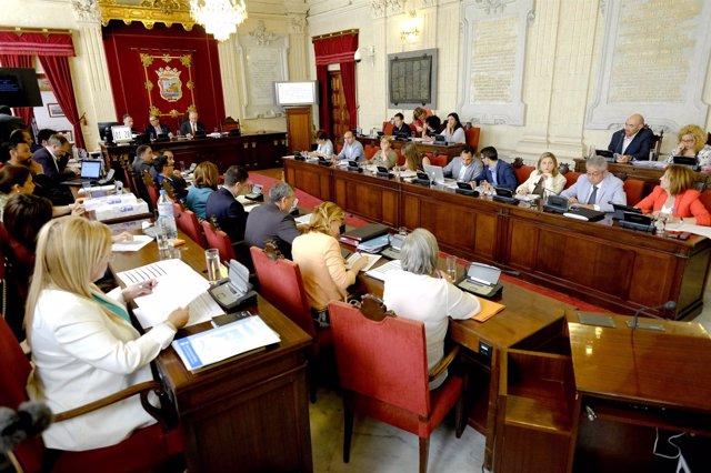 Pleno de mayo del Ayuntamiento de Málaga segunda sesión