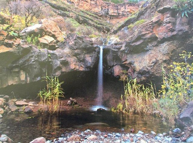 Imagen de Gran Canaria