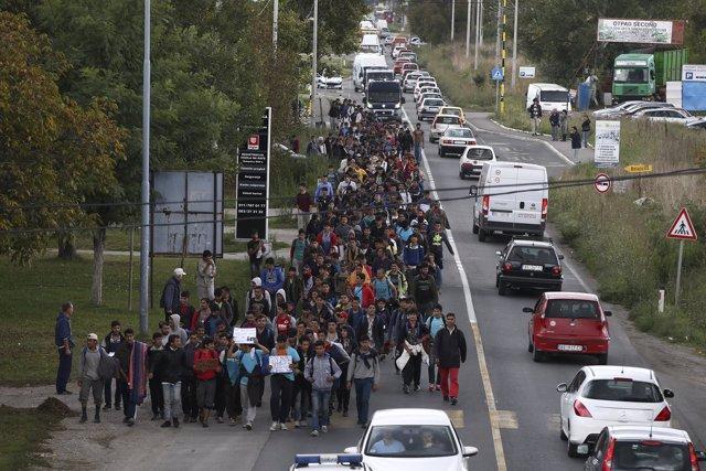 Cientos de refugiados se dirigen hacia la frontera húngara en Belgrado, Serbia.
