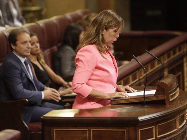Alicia Sánchez Camacho, secretaria primera del Congreso