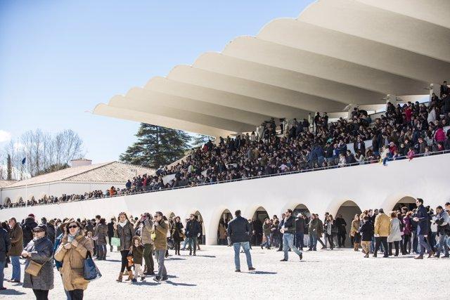 Candidatura Hipódromo De La Zarzuela Como Patrimonio Cultural Del Siglo 20
