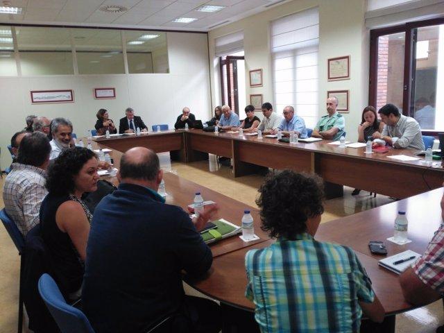 Reunión De Los Comités Científico, Social E Institucional Del Lindano