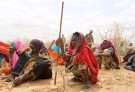 Más de cinco millones de somalíes sufren inseguridad alimentaria a causa de la violencia y las sequías