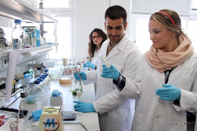 Técnicos de laboratorio experimentan con microalgas