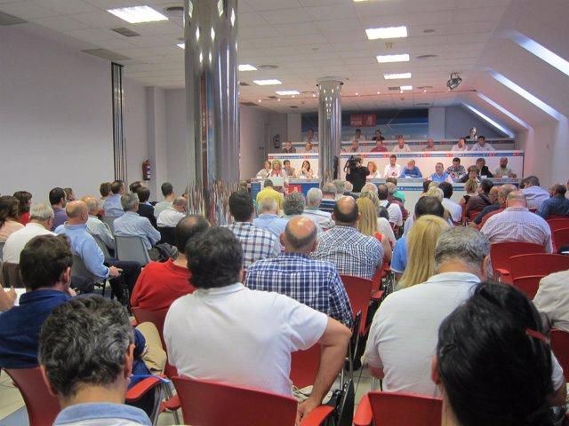 Eva Díaz Tezanos en el Comité Regional del PSOE cántabro
